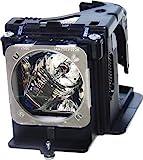 BenQ 5J.J2605.001 Lampenmodul (280 Watt, bis 2000 Stunden) für W6000 Projektor