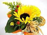VERSANDKOSTENFREI Blumenstrauß 'Sonnenlicht' + kostenlose Glückwunschkarte