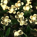 InnooTech 5m 50er Warmweiß LED Solar Blumen Lichterkette Außen als Außenbeleuchtung Deko mit 2m Zuleitungskabel (warmweiss)