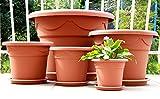 Pflanzkübel + Untersetzer Blumenkübel Blumentopf Pflanztopf Rundtopf S - XXL Neu !!! (30 cm, terracotta)