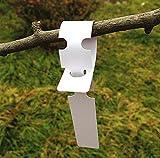 G2PLUS 200Stk. Weiß Plastik Pflanzenstecker Stecketiketten Beschriften Pflanzschilder Schilder 2CM * 20CM Sind Praktisch für Kindergarten