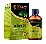 KANZY © -Tea-Baum-wesentliches Öl - 100% reine - 100ml