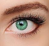 Farbige Kontaktlinsen 3 - Monatslinsen (Grün ohne Stärke mit Aufbewahrungsbehälter)