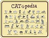 Rahmenlos 3679 Schild: Catipedia
