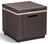 Allibert GF05819 Rattanoptik Kühlbox/Beistelltisch Ice Cube, braun, 40 L