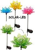 4 Stück _ Solarblume - ' Blüte & Blume - BUNT ' - Solar Leuchte mit LED Licht - Garten Wetterfest für Außen - Solarbetrieben / Figur & Gartendeko Solarleuchte - Laterne Gartenleuchte Außenbeleuchtung - Solarleuchten Dekofigur / photovoltaik - Lampe / Gartendeko - Seerose