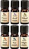 Ätherische Öle Premium EBENTHAL VITAL • Duft-Öl-Set 100% pur & naturrein • IN DEUTSCHLAND ABGEFÜLLT & GEPRÜFT • Aromatherapie-Set mit 6 x 10ml • Eukalyptus Lavendel Minze Orange Fichtennadel Rosmarin