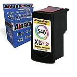 2er Set Drucker Tinten Patronen Kompatibel für Canon 1x PG-545 XL + 1x CL-546 XL Canon Pixma MX495 MX-495 IP 2850 MG 2550 MG 2500 Series MG 2450 MG 2400 Series MG 2950 MG 2455 MG 2555 IP 2800 Series MG 2900 Series