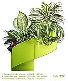 Modul'Green – Designer blumentopf für Wände – drinnen & draußen - Grün