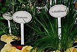 Einzelne Gartenstecker, z.B. 'Thymian' für Kräuter / Gemüse / Gartenfrüchte im Vintage-Look, Höhe 20 cm, Metall