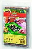 Dominik Blumen und Pflanzen, Romberg 100 Kokos-Quelltabletten 38mm Durchmesser,