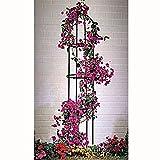 Ranksäule Rankhilfe Blumengitter Rankgestell, 1,85 Meter