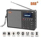 DAB Radios, SAVORI 1.8'LCD Display tragbare FM DAB Radio + Support TF Karte + Support Upgrade + RDS Aufnahmefunktion,über 90 voreingestellte Sender Digital Radio mit Antenne