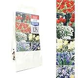 Inter Flower - 125 Blumenzwiebeln - Mix - 6 Sorten - seperat verpackt - Tulpen, Scilla, Muscari,Allium, Narcissen - in Geschenkverpackung