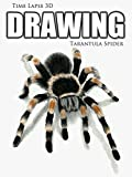 Clip: Time Lapse 3D Drawing: Tarantula Spider [OV]