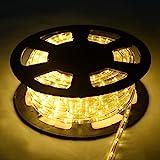 COSTWAY 30M LED Lichterschlauch Lichtschlauch Lichterkette für Außen und Innen mit 1080 LEDs Weihnachtsbeleuchtung Weihnachten Deko(Warmweiß)