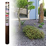[50101065] Plantex Stonemax Unkrautvlies, Unkrautschutz unter Kies- und Schottersteinen | Größe: 15qm (1x15m) | Garantie: 25 Jahre | reißfest