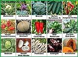 Gemüse Set 2: Broccoli Pastinaken Blumenkohl Gurken Kürbis Zucchini Weißkohl Aubergine ... Samen Saatgut