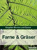 Farne & Gräser - Ratgeber Blumen und Garten