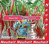 25x Riesen Chili Samen Garten Gemüse Neuheit Pflanze Rarität essbar sehr selten Saatgut #27