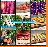 40x Samen von 9 verschiedene Sorten Karotten Hingucker Pflanze Saatgut Rarität Garten Möhren Gemüse #102