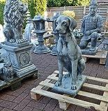 Steinfigur Hund Pointer Vizsla Ridgeback Jagdhund Steinguss Tierfigur Gartenfigur
