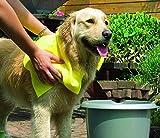 Pawise 11242 Hundehandtuch Pfotentuch Dog Towel, 50 x 40 cm, gelb