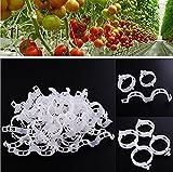 Fanova Pflanzenclips Tomatenclips 100 Stück Kunststoff pflanzenklammern Pflanzen Unterstützungen