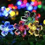 Qedertek Solar Lichterkette Außen, 7M 50 LED Blumen Lichterkette Mehrfarbig Wasserdicht Beleuchtung für Weihnachten, Garten, Hochzeit, Party