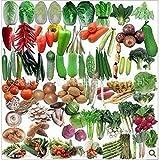 Balkon Gemüse Paket Samenmischung heiße organische Gemüsesamen 50seed