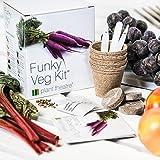 Plant Theatre Flippiges Gemüse-Kit - 5 außergewöhnliche Gemüse zum Selbstzüchten