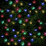 100 Mehrfarbigen LED Blume Solarlichterketten - Solarbetriebene Wasserfest Solar Garten Lichterketten - Solarlampen mit Eingebaut Nacht Sensor, Kette und Erdspieß - Solarleuchten für Außen, Zaun, Terrasse, Hof, Fußweg, Einfahrt, Draußen, Wand, Garage, Schuppen, Gehweg, Dekoration, Ornamente und Boden von SPV Lights: Der Solarlicht- & Beleuchtungsspezialist (2 Jahre kostenlose Gewährleistung inklusive)