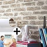 Steintapete Vliestapete Grau Creme , schöne edle Tapete im Steinoptik , moderne 3D Optik für Wohnzimmer, Schlafzimmer oder Küche inklusive Newroom Tapezier Profibroschüre, mit Tipps für perfekteWände