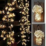 Yoyokit Begonie-geformt Lichterkette Vorhang Weihnachten 2M 100LEDs 8 Modi Innen Außen  LED lichtervorhang für Weihnachten Party Hochzeit Weihnachtsbeleuchtung Deko,IP44 wasserfest