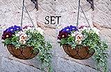 2er Blumenampel Set Lilienburg Korb HOME (30x30cm) für Außen - Blumen-Ampel