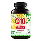 MeinVita Coenzym Q10, extra hochdosiert mit 200mg pro Kapsel - 120 Kapseln im 4 Monatsvorrat, Premium Q10, MeinVita Linie, Bioaktiv, 100% Vegan, hergestellt in Deutschland