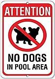 Modtory Warnschild No Dog in Pool Area, Aluminium