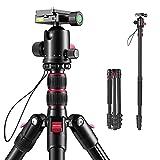 Stativ Kamera 200cm, ROXTAK Aluminum Fotostativ mit Einbeinstativ Monopod und 360° Panorama Kugelkopf, 1/4 Schnellwechselplatte und Stativtasche für Canon Nikon Sony Spiegelreflexkamera