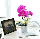 SHACOS Phalenopsis Orchidee Lila Kunstpflanze Orchidee Künstlich im Topf Bonsai Groß Kunstblume Deko für Café, Fensterschmuck Fest, Küche usw.