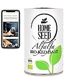Homeseed Alfalfa [300g] 100% Bio Sprossensamen Keimsprossen Microgreens + Anleitung zum Sprossen ziehen (300)
