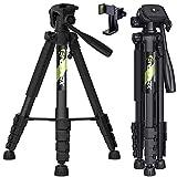 Endurax 167 cm / 66 inches Video Kamera Stativ für Canon Nikon Leichte Aluminium Reise DSLR...
