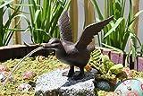 Unbekannt Wasserspeier Ente mit Pumpe