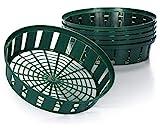 com-four® 6X Pflanzkörbe für Blumenzwiebeln, Anzucht-Pflanzschale zum Einpflanzen und Aufbewahren von Zwiebelpflanzen, großer grüner Zwiebelkorb (06x Pflanzschale - 31cm)