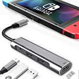 RREAKA USB Typ C zu HDMI Digital AV Multiport Hub, USB-C (USB3.1) Adapter PD Ladegerät für Nintendo Switch, tragbares 4K HDMI Dock für Samsung Dex Station S20 / Note20 Travel TV Dockingstation