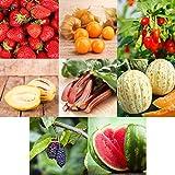 Prademir Obst Samen Set 8 Sorten Frucht Mix Obst Garten Saatgut Geschenke für kinder Hochbeet Balkon für Pflanzen