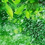 In the Carport - Heavy Rain Taking Off
