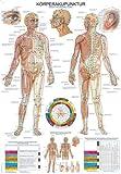 Lehrtafel'Körperakupunktur', 70x100cm