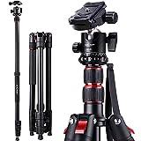 K&F Concept S210 Stativ Kamera Stativ 200cm, Aluminium Reisestativ mit Einbeinstativ, Fotostativ mit Kugelkopf und 1/4'' Schnellwechselplatte für Canon Nikon Sony Olympus