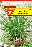 Schnittknoblauch, Samen für ca. 2 lfm.
