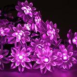 LED Solar Garten Lichterkette Außen weihnachten Lotos Außenlichterkette Blumen 50LEDs Party (Rosa)